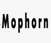 Mophorn Coupons